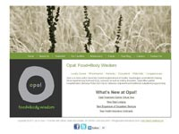 Opal Food+Body Wisdom - Wordpress custom site, integrate blog, training registration